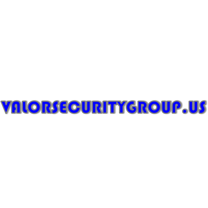 Valor Security Group
