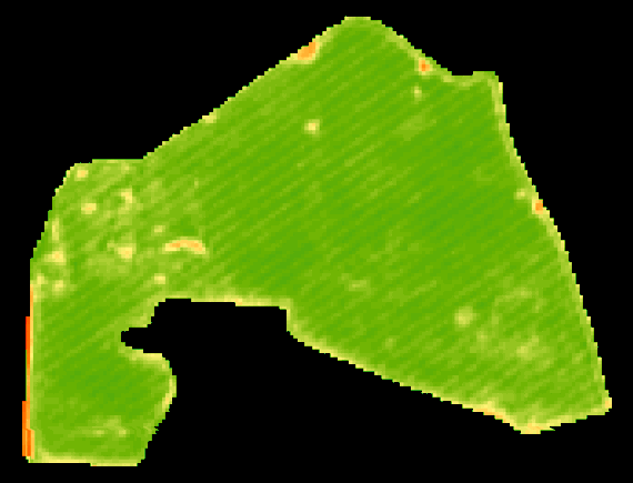 GEOMATIC Diagnostyka Monitoring Budowlany Geodezja