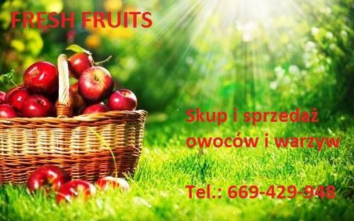 Fresh Fruits Dominik Dobrosz