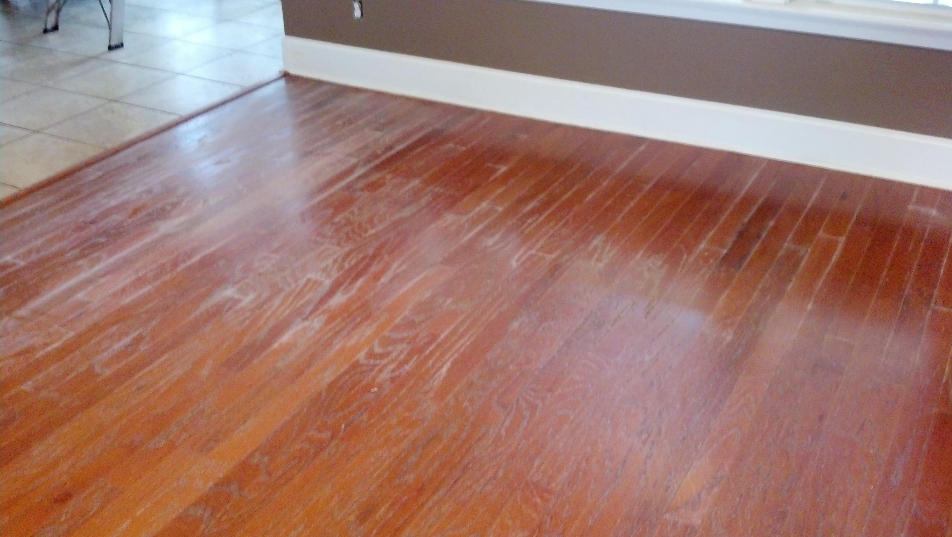 Carpet Cleaning Tallahassee Fl - Extreme Carpet Care Inc