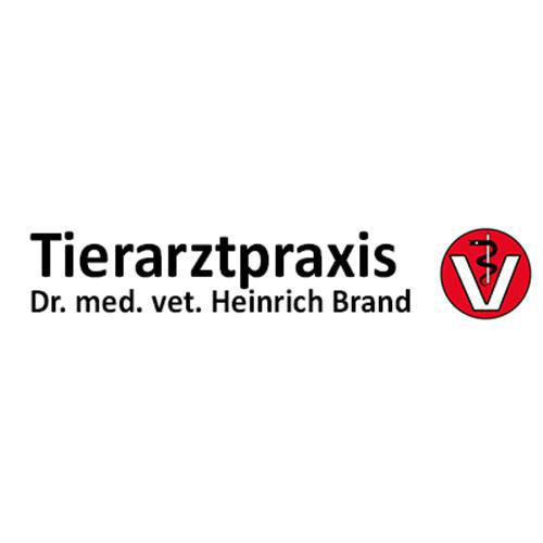 Bild zu Tierarztpraxis Dr. med. vet. Heinrich Brand in Neuenkirchen Vörden