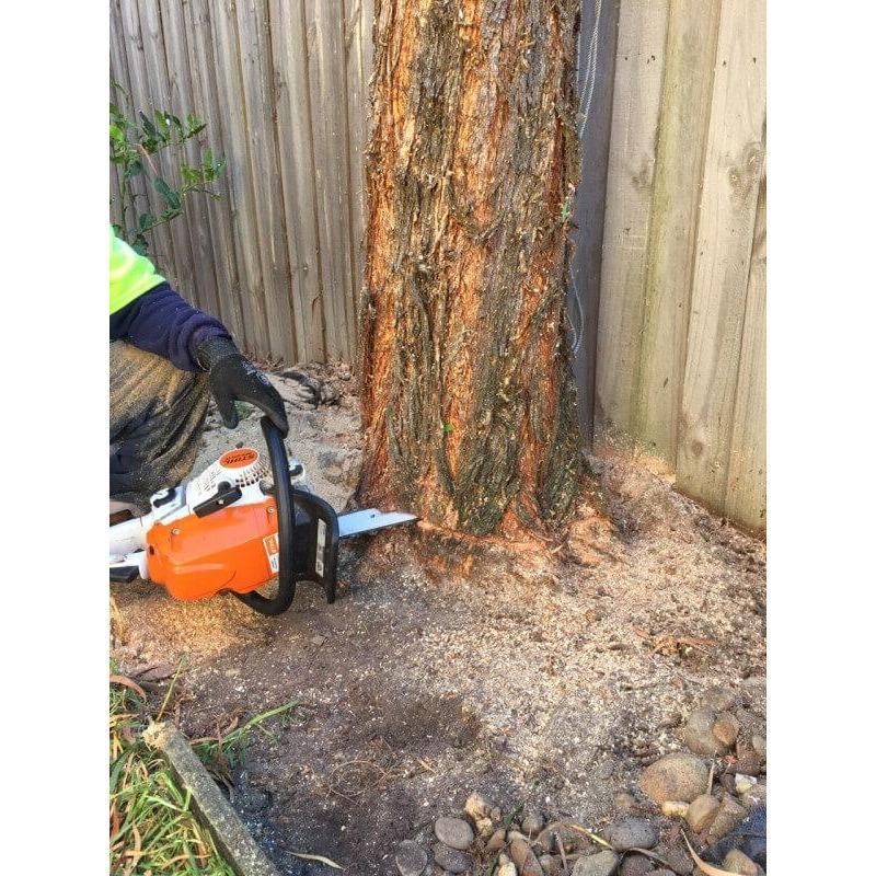 FH Tree & Lawn Services, Inc - Rapidan, VA 22733 - (540)729-0540 | ShowMeLocal.com