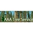 Tree Service in CO Colorado Springs 80905 AAA Tree Service 617 W Cucharras St  (719)287-8733