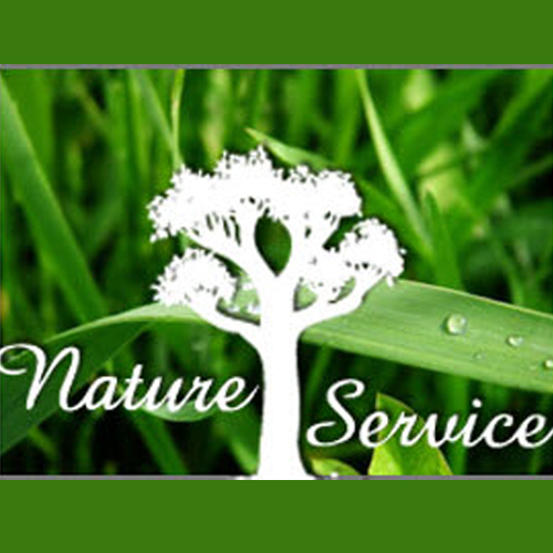 Nature's Tree Service