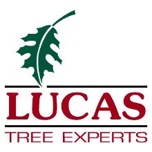 Lucas Tree Experts Logo