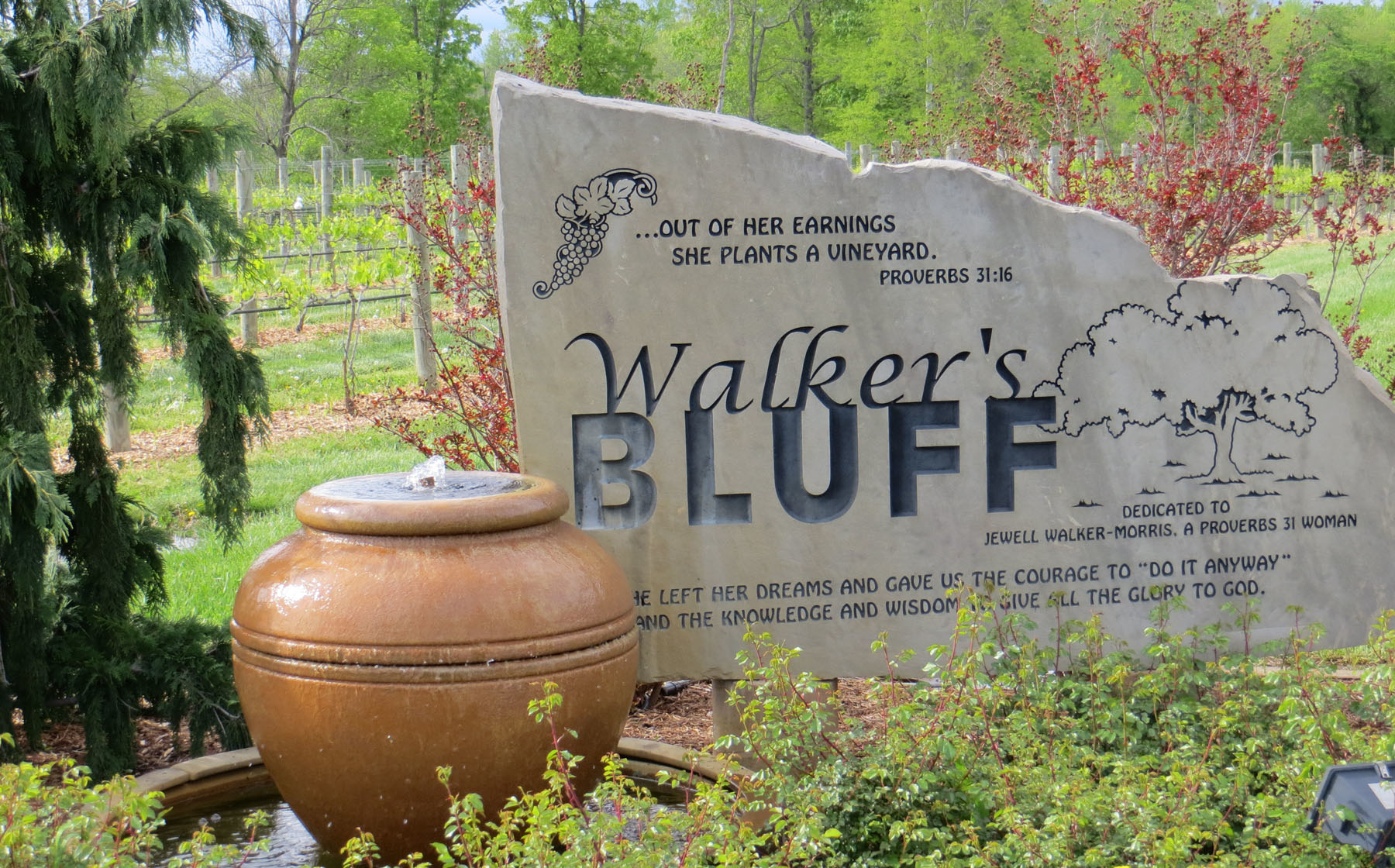 Walker's Bluff
