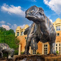 Fernbank Museum of Natural History - Atlanta, GA -