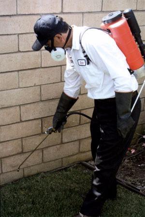 AAA Schaeffler Pest Control
