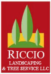 Riccio Landscaping & Tree Service image 14