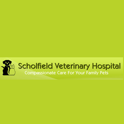 Scholfield Veterinary Hospital - Grand Rapids, MI 49512 - (616)965-6231 | ShowMeLocal.com