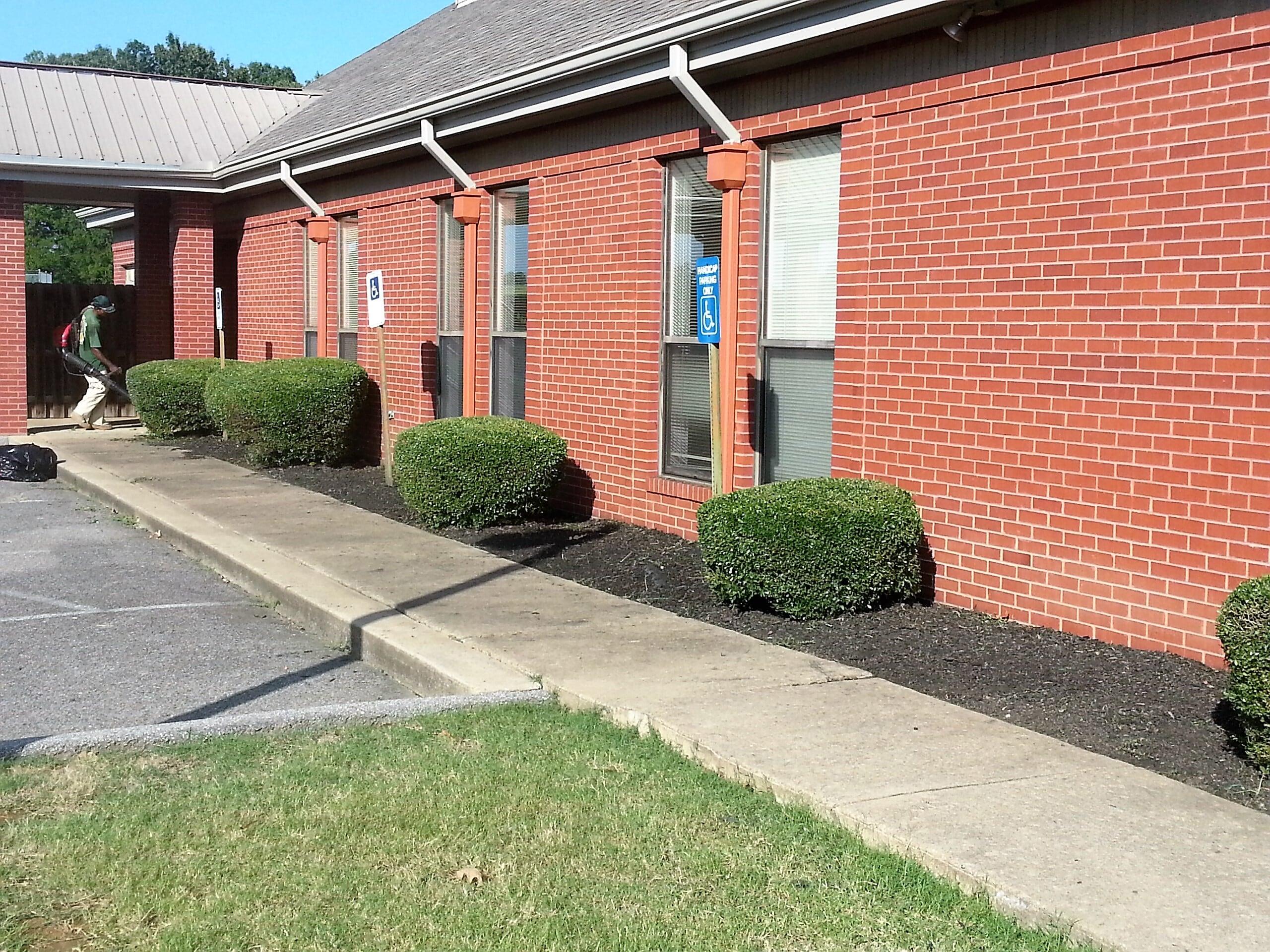 Trinity Lawn Care Of Memphis In Memphis Tn 38119