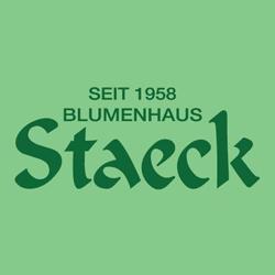 Bild zu Blumenhaus Staeck in Celle