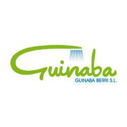 Guinaba Berri