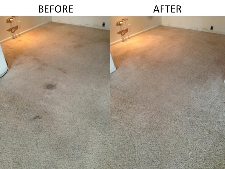 Cheyenne Best Carpet Cleaners LLC in Cheyenne, WY 82009 ...