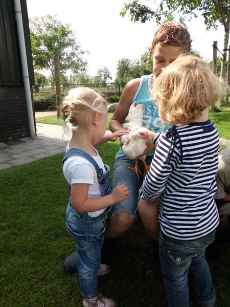 Kinderdagverblijf en buitenschoolse opvang Boerderij De