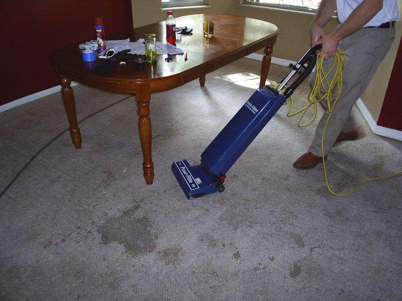 Harpers Carpet Cleaning Pasco Hillsborough San Antonio