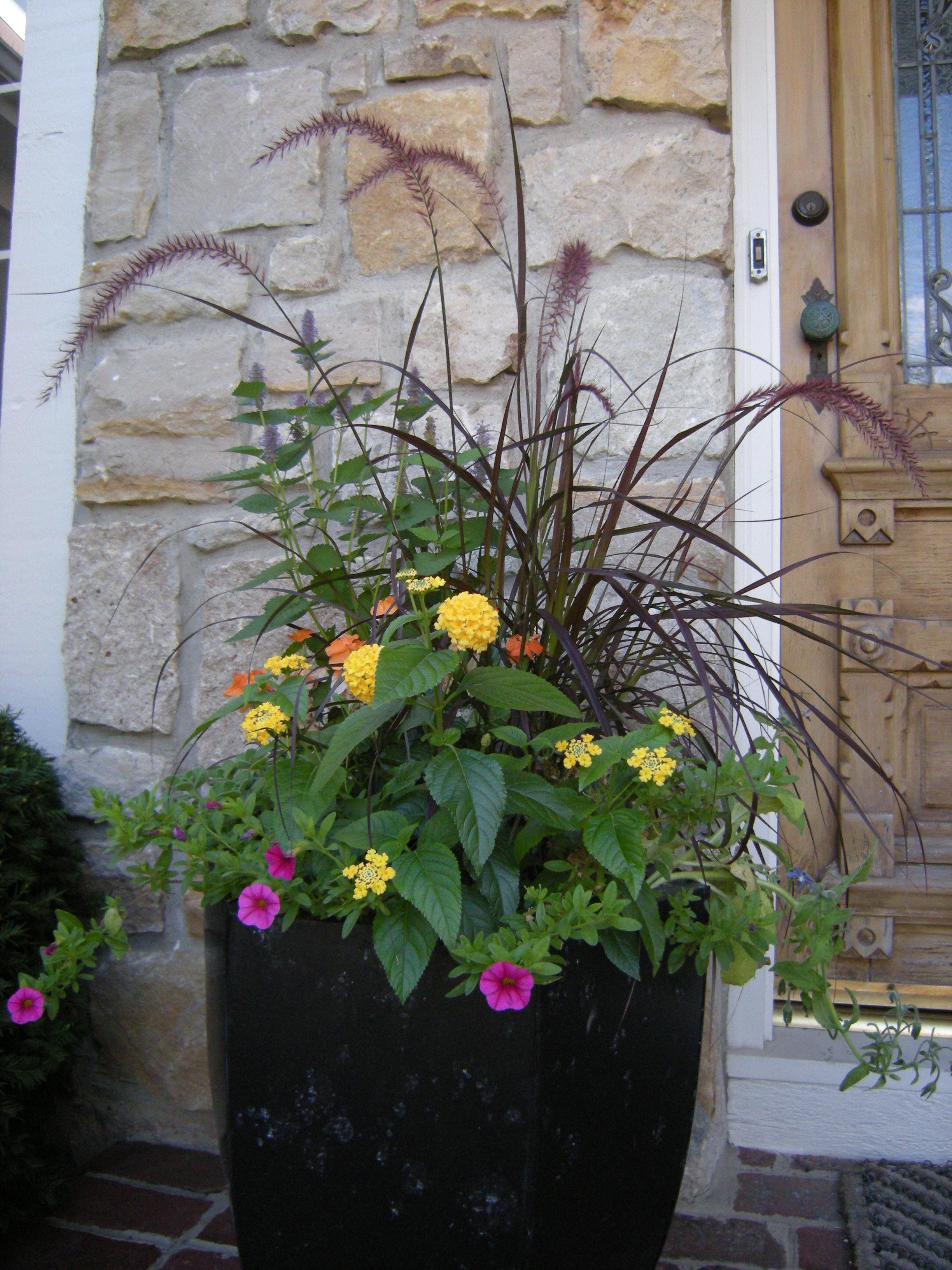 Greenleaf Garden Services image 7