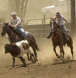 Gunstock Ranch image 3