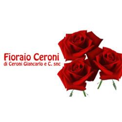 Fioraio Ceroni