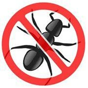 Realty Pest Services