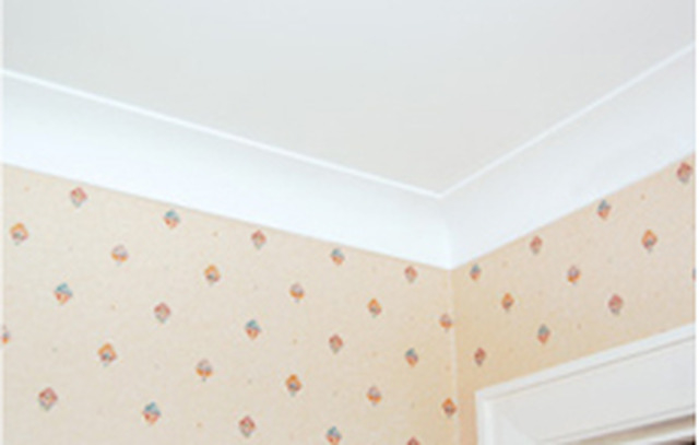 Absolute Plastering and Building Maintenance Services