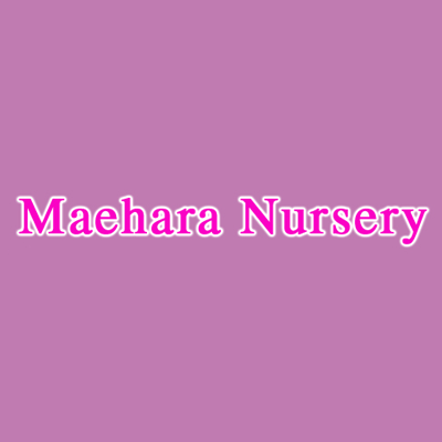 Maehara Nursery - Fountain Valley, CA - Garden Centers