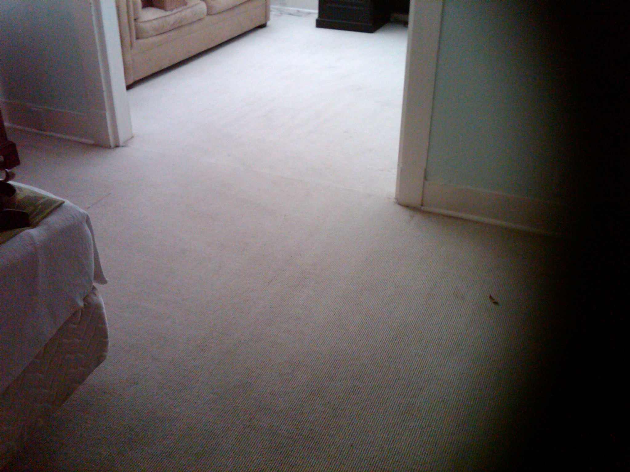 Carpet Green Clean, a division of GLR Services Inc. in ...