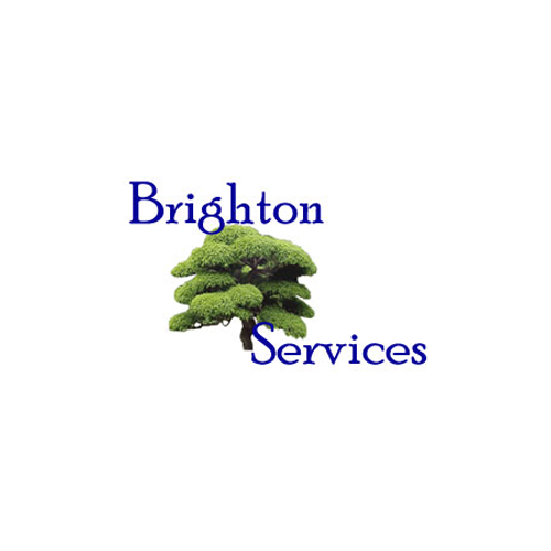Brighton Services - New Hudson, MI - House Cleaning Services