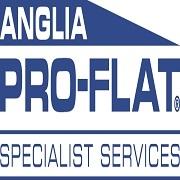 Pro-Flat Specialist Services Ltd