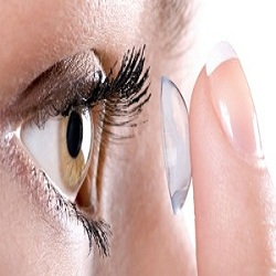 Wize Eyes Optometrists