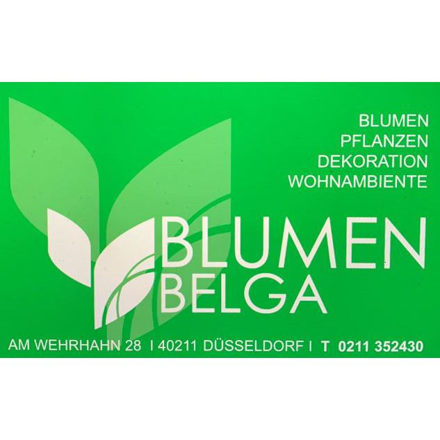 Bild zu Said Belga in Düsseldorf