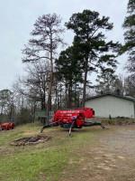 Image 5 | Hurt Tree Service