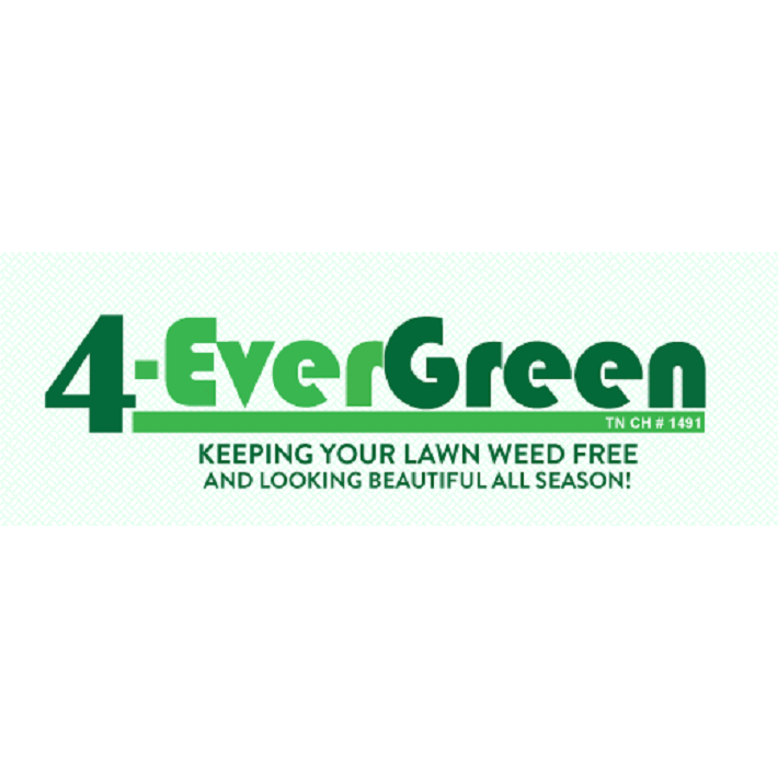 4 evergreen lawn service jackson tennessee tn for Local lawn care services