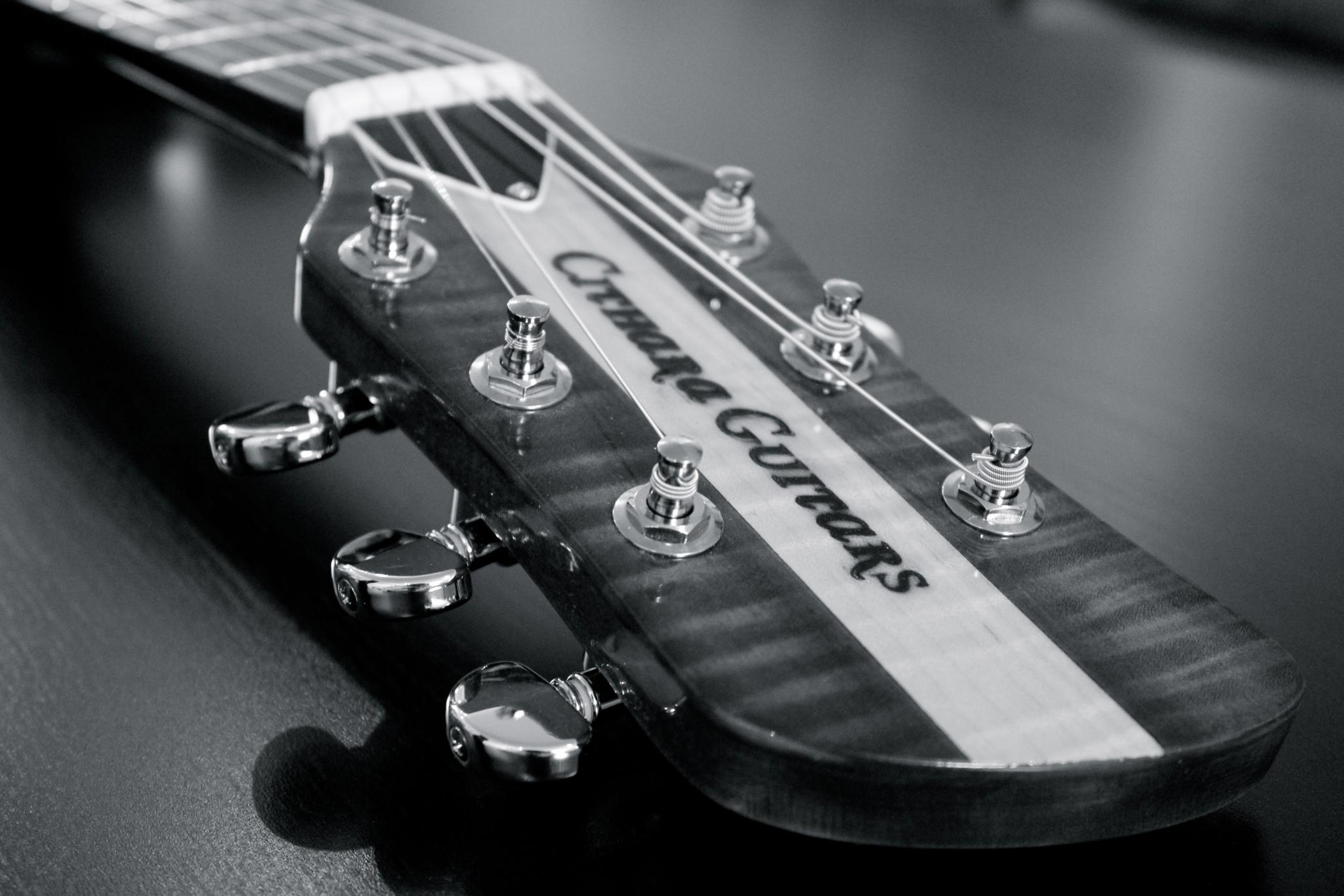 Cithara Guitars Inc Hamilton (519)806-8888