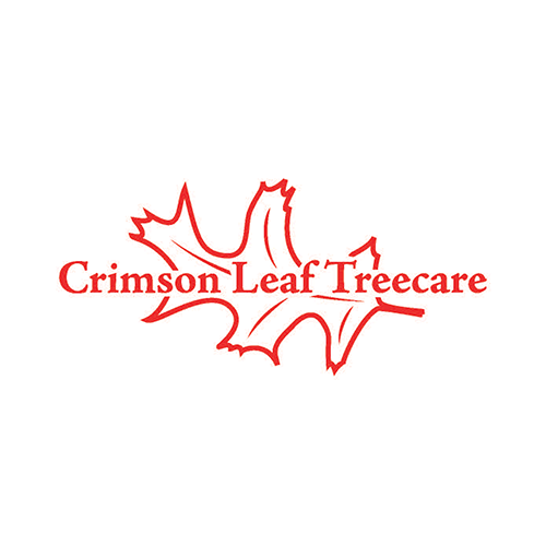Crimson Leaf Treecare