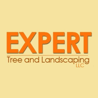 Expert Stump Removal Co Inc