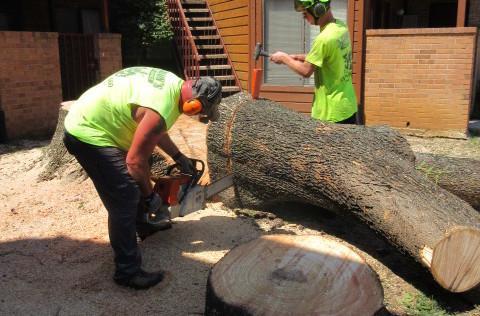 Aaron's Tree Service Inc.
