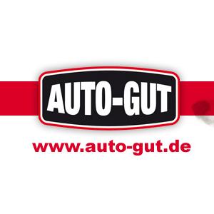 Bild zu Kfz-Werkstatt AUTO-GUT in Bannewitz