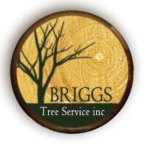 Logo Design For Briggs Tree Service in Lansing Illinois