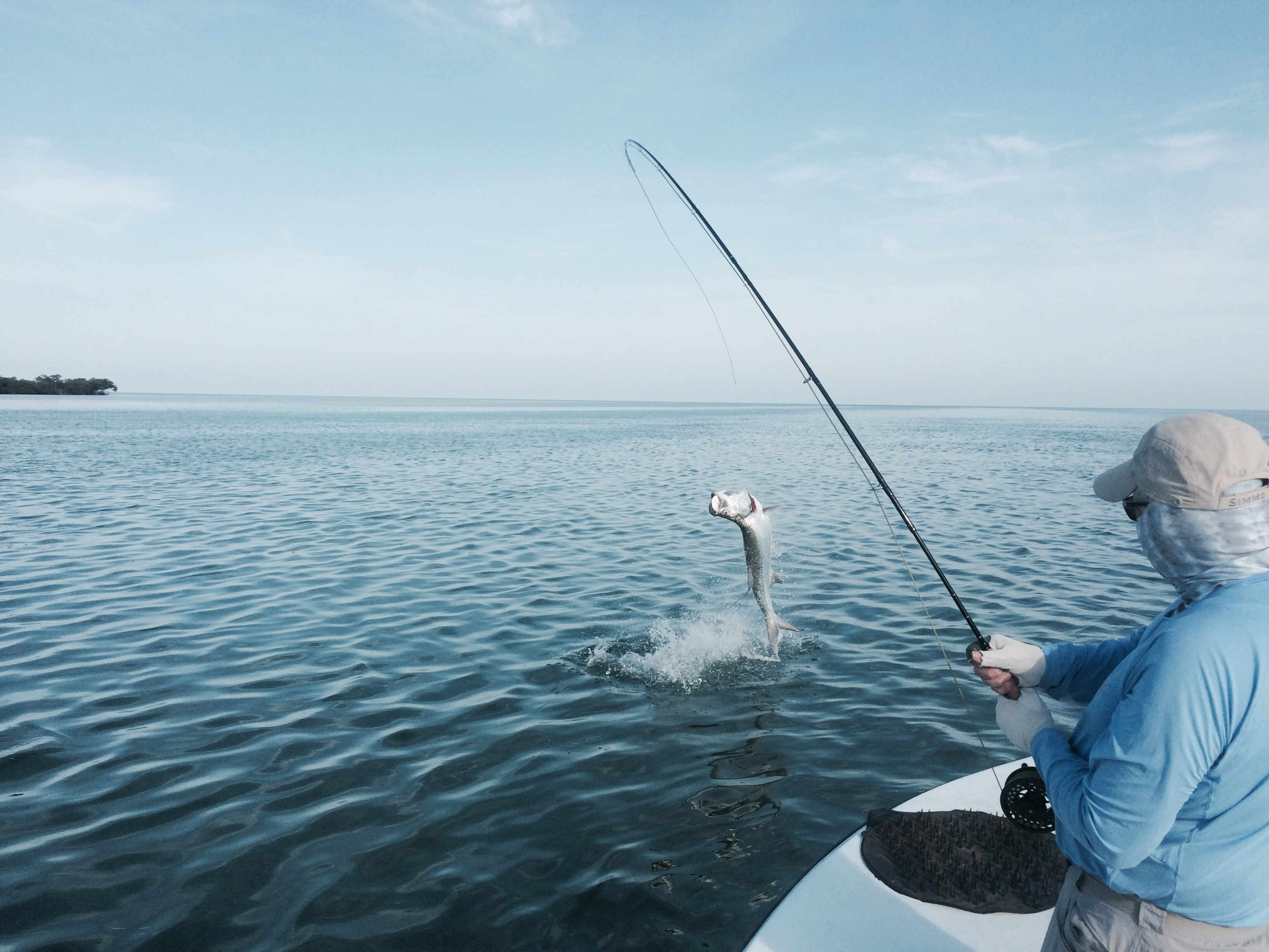 Capt mike wilbur 39 s chaser key west fishing coupons near me for Where to go fishing near me