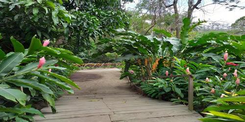 Jardín Botánico Plan de la Laguna
