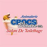 Animalerie Crocs Blancs Inc