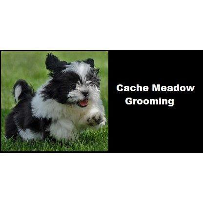 Cache Meadow Grooming - Logan, UT - Veterinarians
