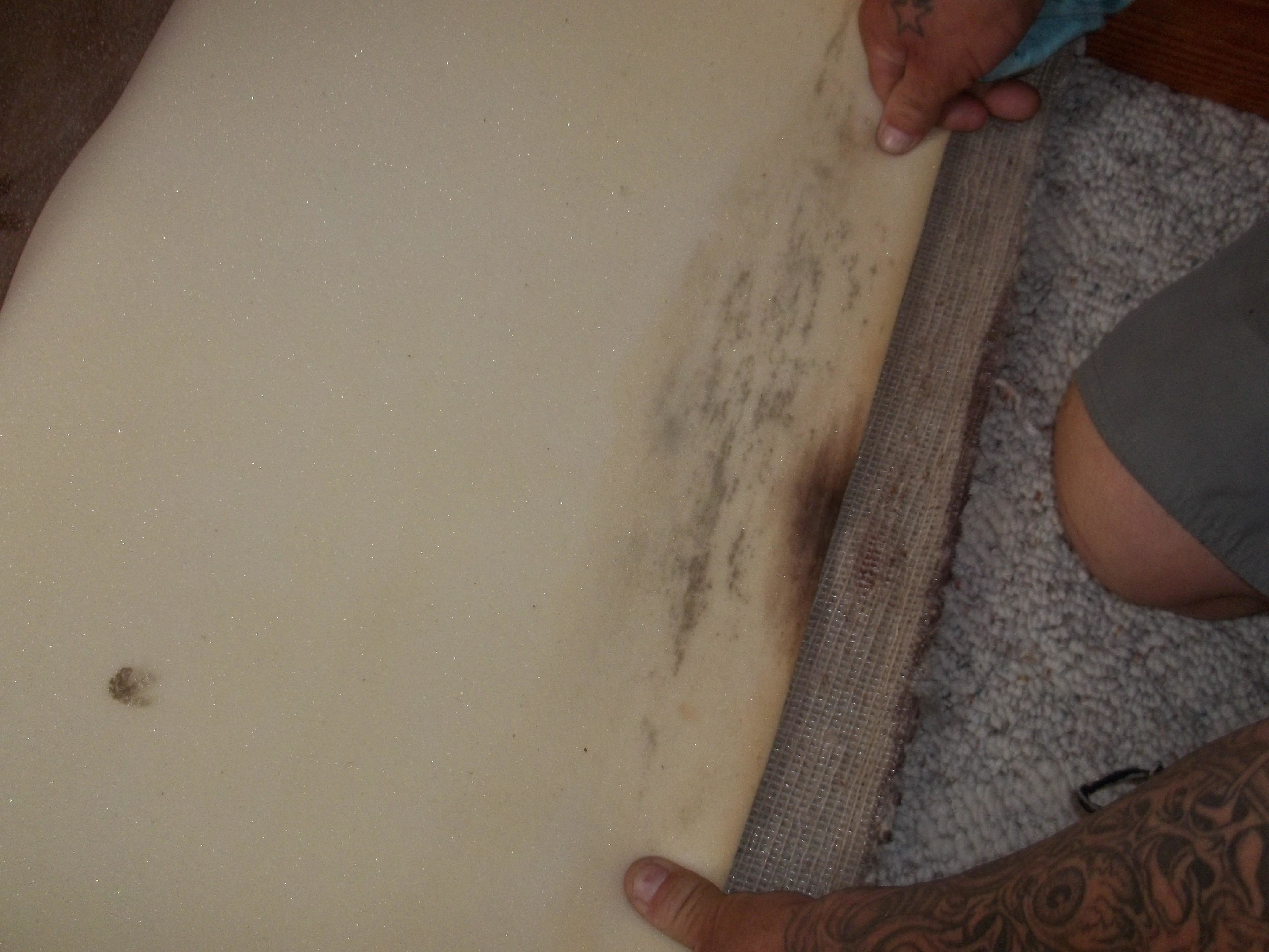 Anderson Restoration & Emergency Services - Water Damage & Mold Remediation image 7