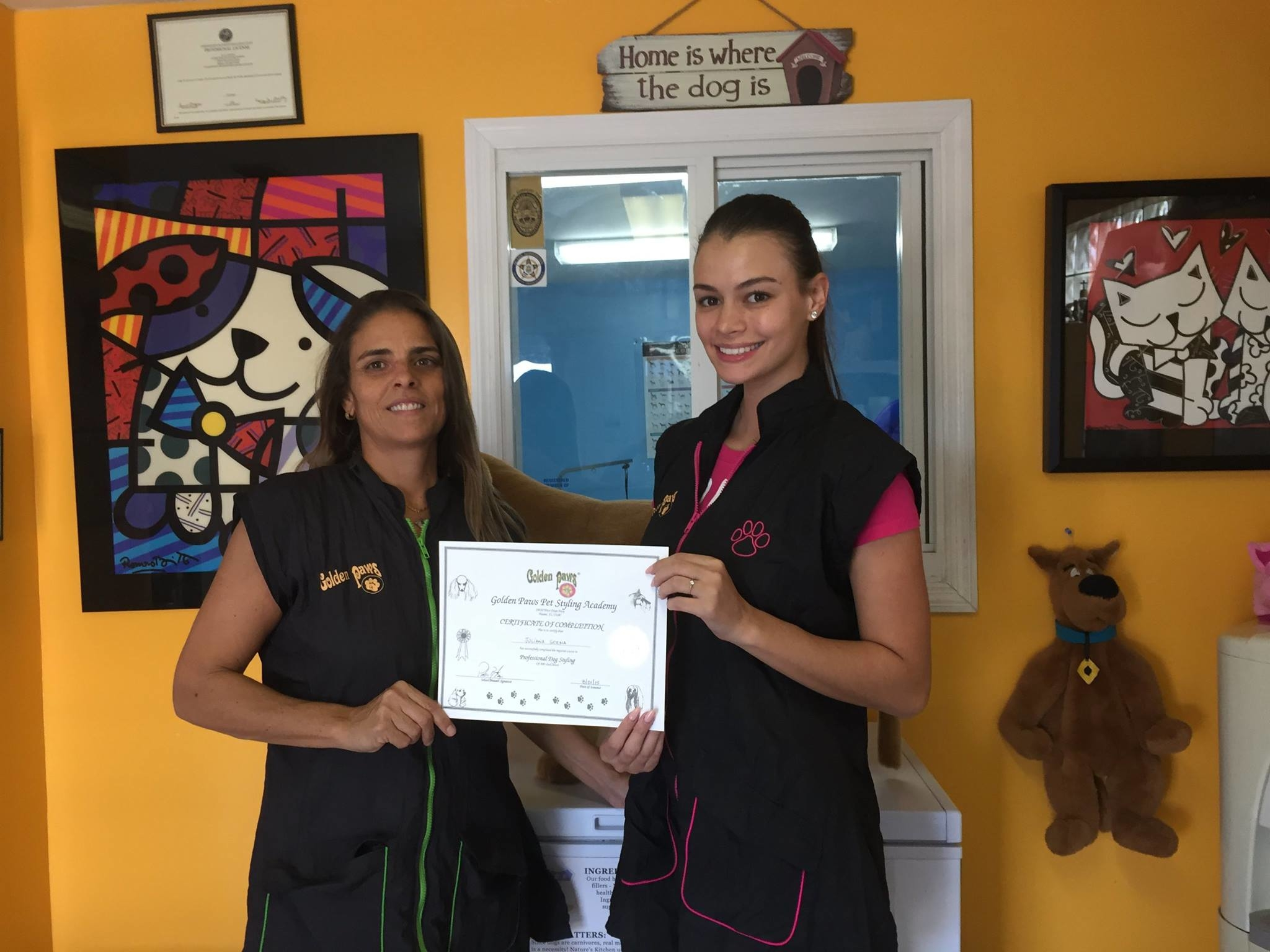 Dog Grooming Schools In Miami Florida