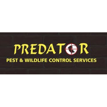 Predator Pest Control Services - Barry, South Glamorgan CF63 2PB - 07778 998823 | ShowMeLocal.com