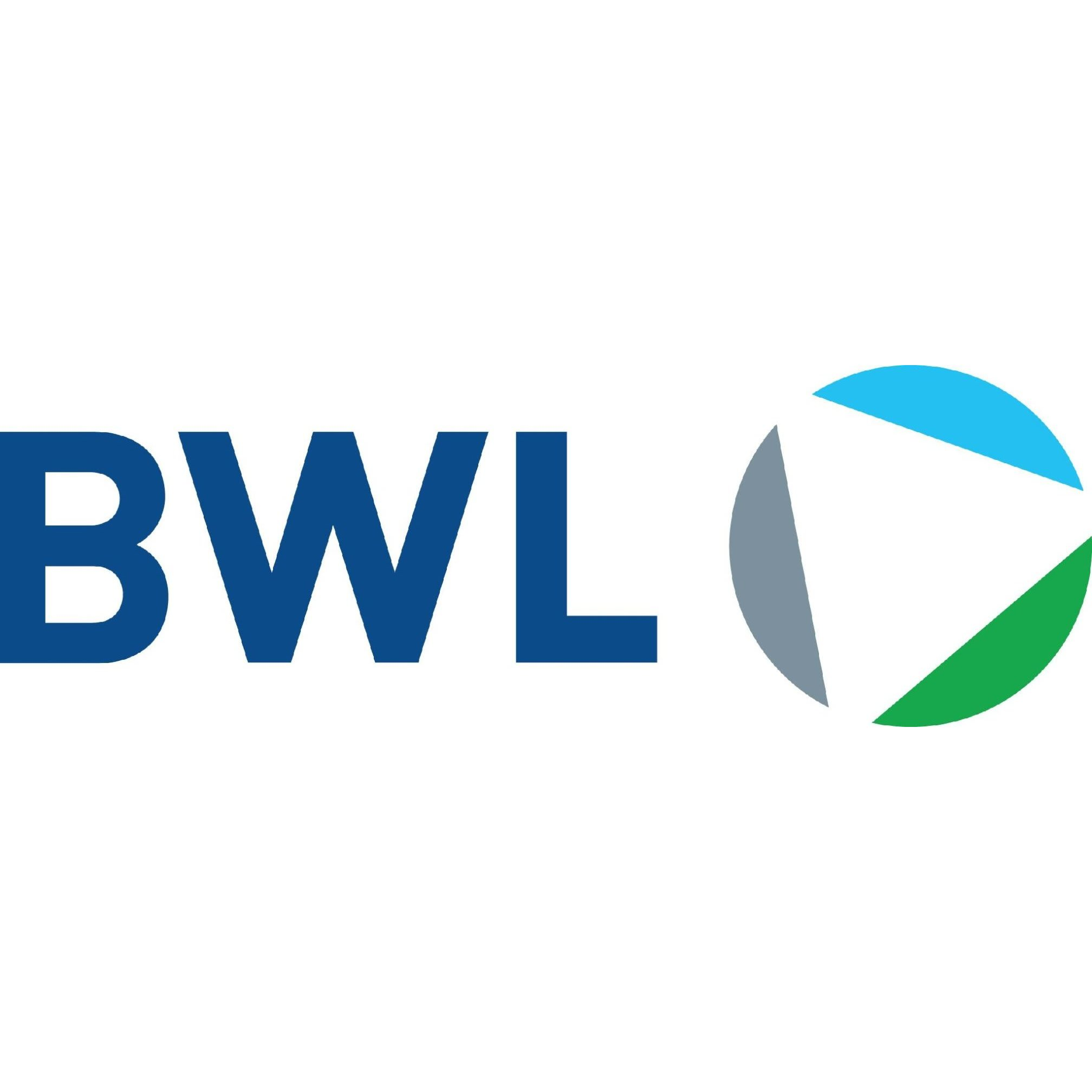 BWL Consulting Ltd