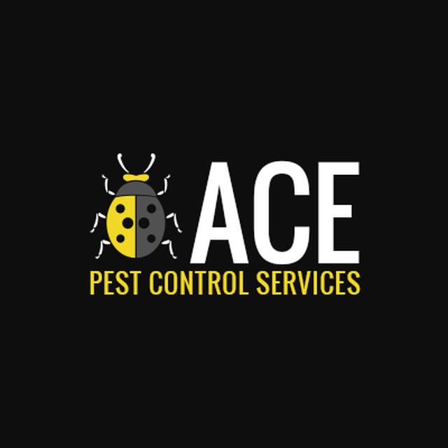 ACE Pest Control Services - Aylesbury, Buckinghamshire HP17 8EU - 07973 669967 | ShowMeLocal.com