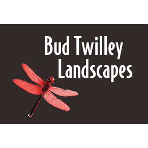 Bud Twilley Landscape