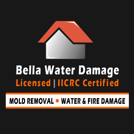 Bella Water Damage